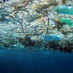 La zuppa di plastica Mediterranea