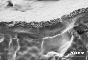 Immagine al microscopio elettronico a scansione della sezione trasversale della protesi retinica.