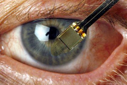 Topolini tornano a vedere grazie alla retina artificiale
