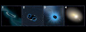 """La sequenza mostra come le onde gravitazionali possano allontanare un buco nero dal centro di una galassia. (1) Due galassie, ognuna con un buco nero centrale sono nell'atto di fondersi. (2) I due buchi neri all'interno della nuova galassia risultante si dispongono nella regione centrale e cominciano a ruotare uno attorno all'altro, emettendo energia sotto formna di onde gravitazionali ed avvicinandosi sempre più tra loro (3). Se i buchi neri non hanno la stessa massa e velocità di rotazione, emettono onde gravitazionali con più intensità in una specifica direzione. (4) I buchi neri alla fine si fondono per formarne uno supermassivo. L'energia emessa della fusione spinge via, con un vero e proprio """"effetto razzo"""", il buco nero in direzione opposta a quella del treno di onde gravitazionali più intense. Crediti:NASA, ESA, e A. Feild (STScI)"""