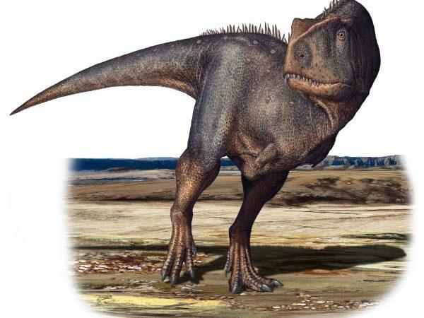 Le tracce dei dinosauri sulle montagne abruzzesi