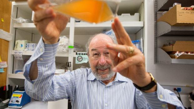 Sembra davvero incoraggiante il vaccino antitumorale messo a punto a Stanford