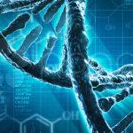 Usa: nuova tecnica di editing genetico restituisce vista a topi ciechi
