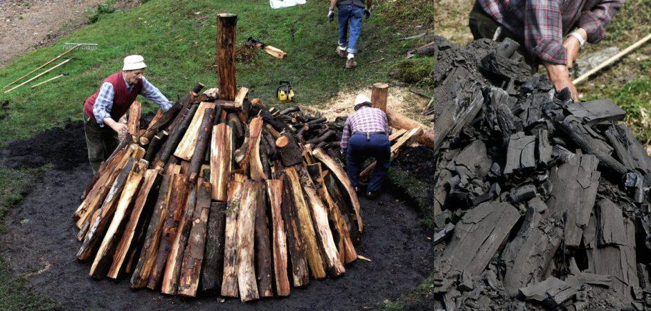 Il Biochar, il carbone vegetale è il miglior modo per rimettere la CO2 sotto terra!